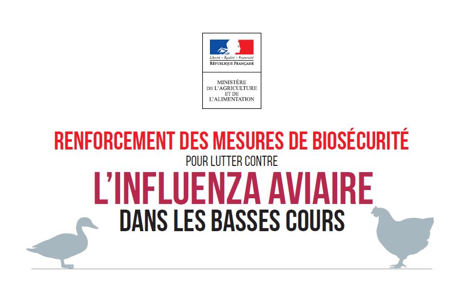 Influenza aviaire : Protégez vos élevages